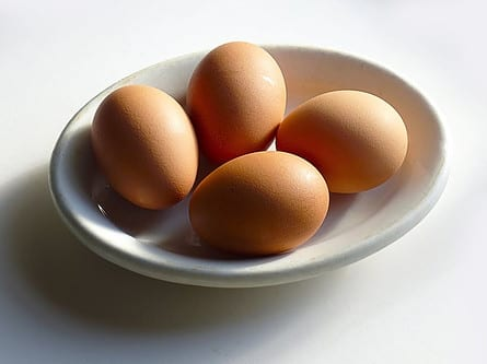 What is Egg Protein Powder? - Gains Ready to Hatch?