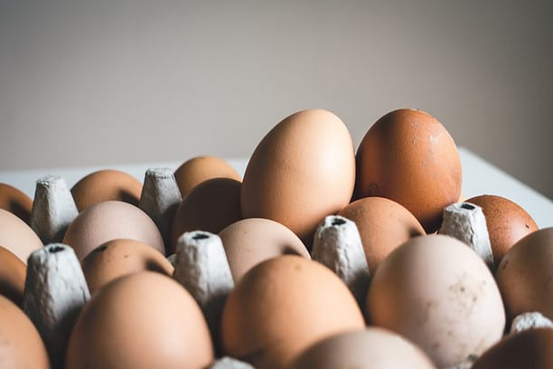 Are Eggs A Good Source Of Protein? - Eggceptional